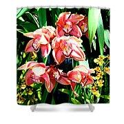 Joy Orchids Shower Curtain