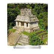 Mayan Temple Shower Curtain