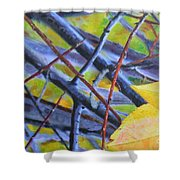 Mayday In September Shower Curtain