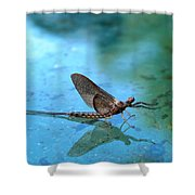 Mayfly Reflected Shower Curtain