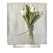 Mazzo Shower Curtain by Priska Wettstein