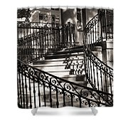 Mccormick Mansion Staircase Shower Curtain