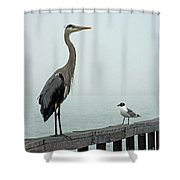 Youve Got A Friend Shower Curtain