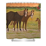 Me And Mrs Ed Shower Curtain