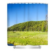 Meadow And Forest Shower Curtain