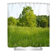 Meadow Blossoms Shower Curtain