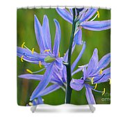Meadow Camas Shower Curtain