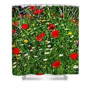Meadow Flowers - Digital Oil Shower Curtain
