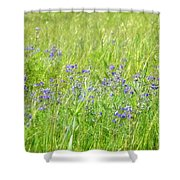 Meadow Lupine Shower Curtain