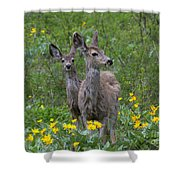 Meadow Meal Shower Curtain