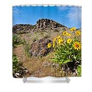 Meadow Of Arrowleaf Balsamroot Shower Curtain