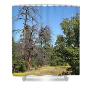 Meadow Over Oak Creek Canyon  Shower Curtain