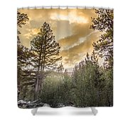 Meadow Sunset Gold Shower Curtain