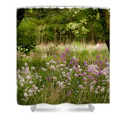 Meadow Wildflowers Shower Curtain