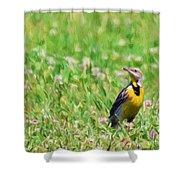 Meadowlark In The Wildflowers Shower Curtain