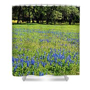 Meadows Of Blue And Yellow. Texas Wildflowers Shower Curtain