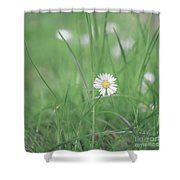 Meadows Of Heaven Shower Curtain