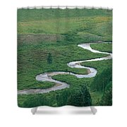 Meandering East River Shower Curtain