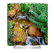 Meandering Flow Shower Curtain