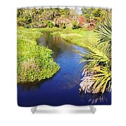 Meandering Stream Shower Curtain