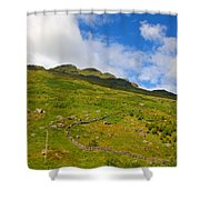 Meandering Wall Shower Curtain
