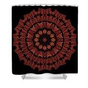 Medicine Wheel Dragonspur K12-5 Shower Curtain