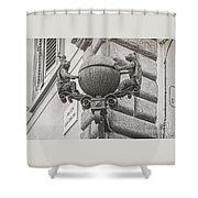 Medieval Alarm Shower Curtain