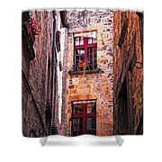 Medieval Architecture Shower Curtain