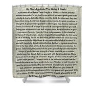 Medieval Desiderata Poster On Estruscan Marble Shower Curtain