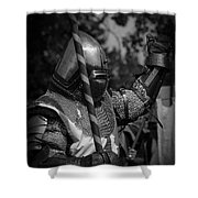 Medieval Faire Knight's Victory 1 Shower Curtain