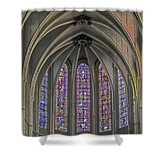 Medieval Stained Glass Shower Curtain