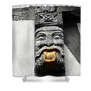 Medieval Statue Shower Curtain