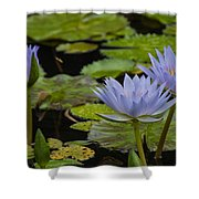 Meditative Garden Shower Curtain