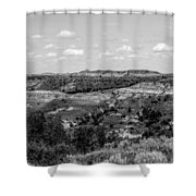 Medora 17 Shower Curtain