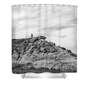 Medora 34 Shower Curtain