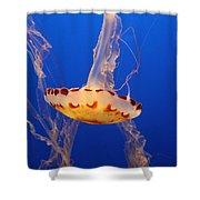 Medusa Jelly Shower Curtain