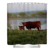 Meet N Greet Shower Curtain