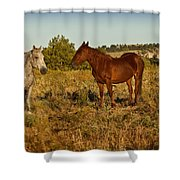 Meeting Shower Curtain