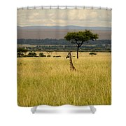 Meeting Of The Minds Shower Curtain