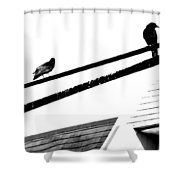 Meeting On Line  Shower Curtain