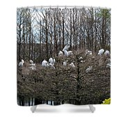 Meeting Place Shower Curtain