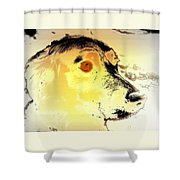 Feeling Like The Most Melancholic Dog In The World  Shower Curtain