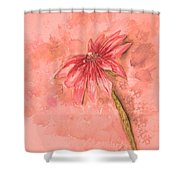 Melancholoy Shower Curtain by Crystal Hubbard