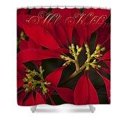 Mele Kalikimaka - Poinsettia  - Euphorbia Pulcherrima Shower Curtain