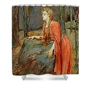 Melisande Shower Curtain by Henry Meynell Rheam