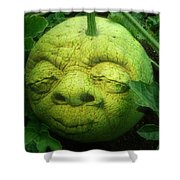Melon Head Shower Curtain by Jack Zulli