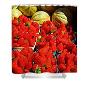 Melons And Strawberries Shower Curtain