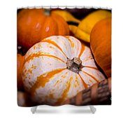 Melons Shower Curtain by Nelson Watkins