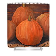 Melons Shower Curtain