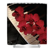 Memories Of The Music Lovers - Vintage Style Shower Curtain